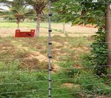 fencing in india